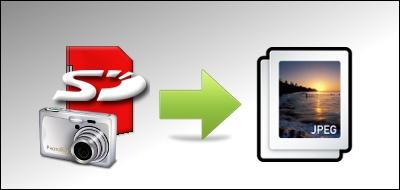 SDカード写真