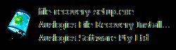 file-recovery-setup.exe