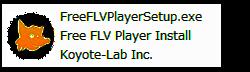 FreeFLVPlayerSetup.exe